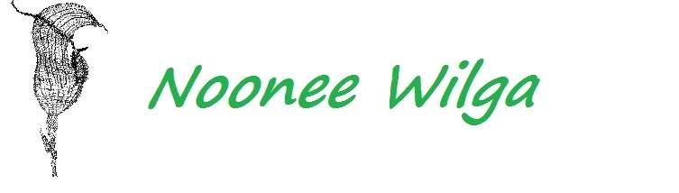 Noonee Wilga logo and banner